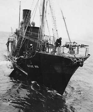 Globe Whale Catchers - Norwegian Merchant Fleet 1939-
